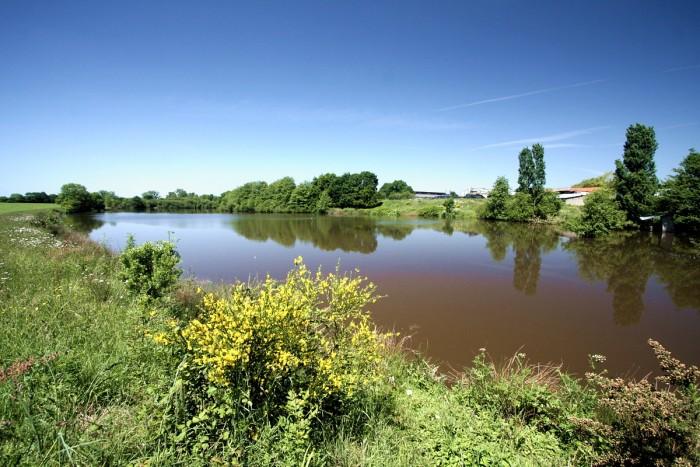 Gite de peche en Vendée superficie de 3 hectares