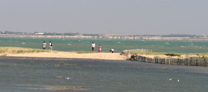 Baie de l'aiguillon partie intégrante du marais poiteviin