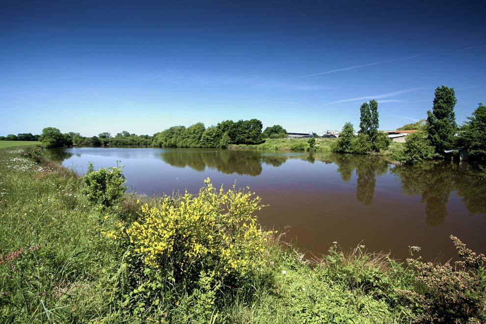 Gîte de pêche sur un étang de 3 ha