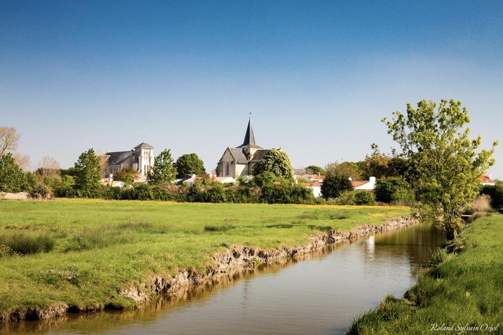 Idées de sorties en groupes en Vendée une balade en canoë dans le marais