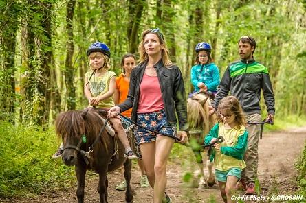 Activité pour les groupes pendant votre séjour la balade à poneys pour les enfants